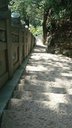 Tianmushan Scenic Aera: 陡峭的石阶