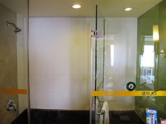 Golden View Hotel: 卫生间淋浴区