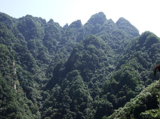 Jifengshan Scenic Resort: 鸡峰山