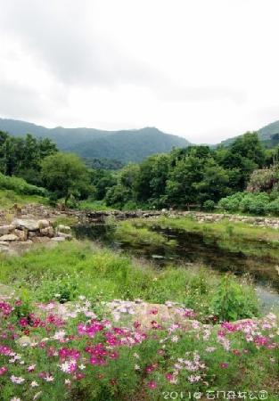 Shimen Forest Park : 景2