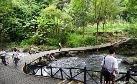 Shimen Forest Park : 景4