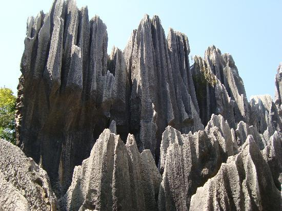 1 Day Private Tour To Stone Forest and Jiuxiang Cave