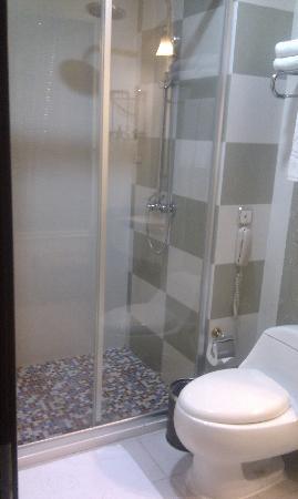Jinyindao Hotel: 卫生间