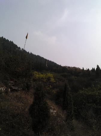 Ji'nan Jiangshui Spring : 回龙塔
