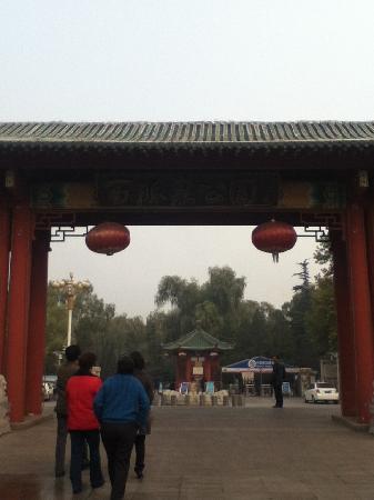 Baimai Spring Park : 百脉泉公园