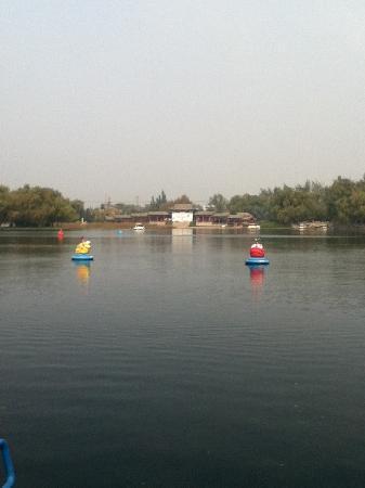 Baimai Spring Park: 百脉泉公园