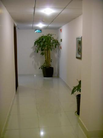 Fenglan Business Hotel: 走廊1