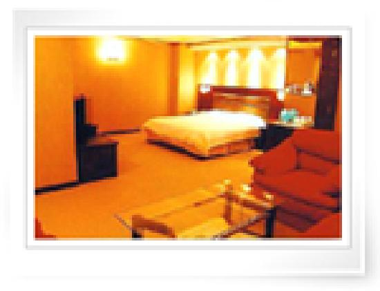 Champs Elysees Business Hotel: 客房