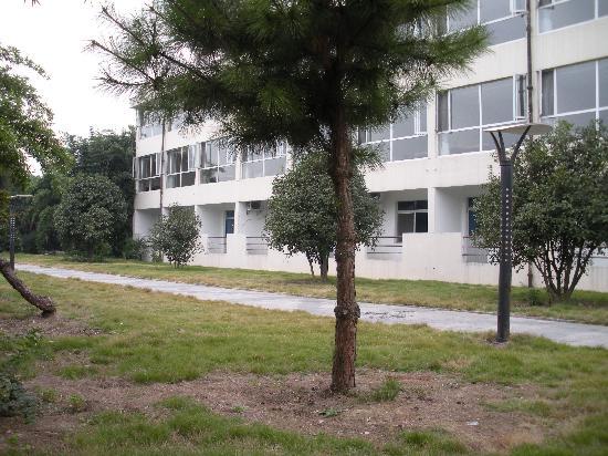 Bamboo Garden Hotel: 酒店外围环境
