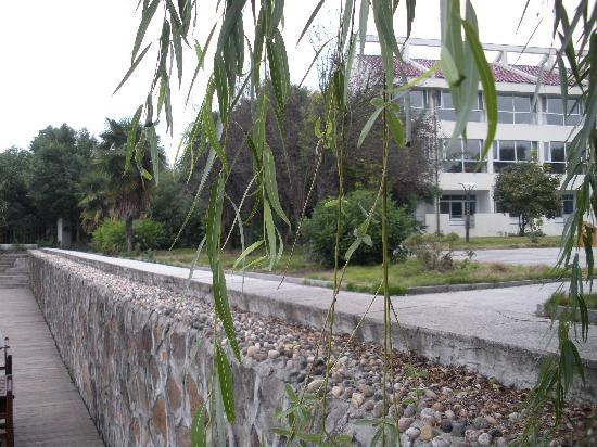 Bamboo Garden Hotel: 酒店外围环境2