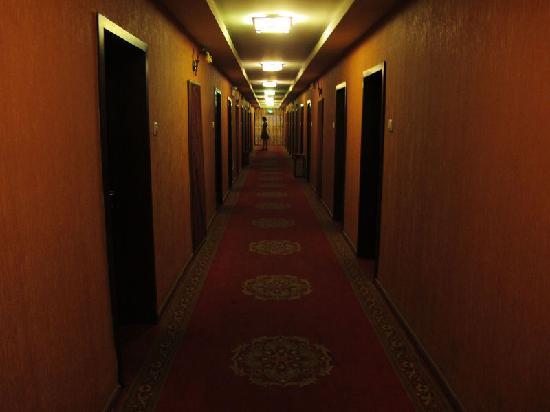 جينلي فري تايم هوتل: 客房走廊