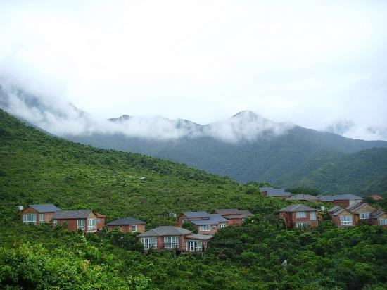 Luzui Villa: 山庄外景