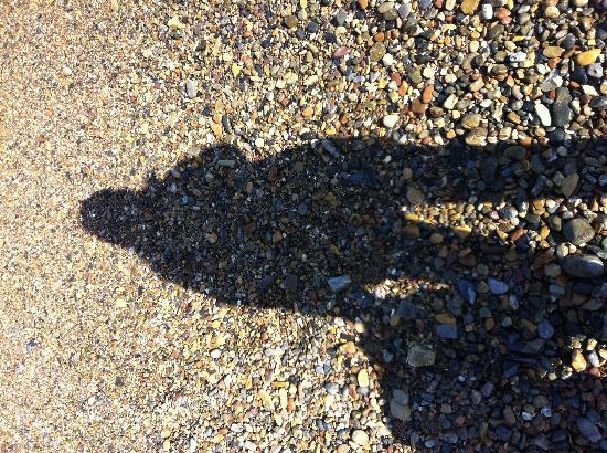 Golden Sandy Beach: 金石滩的石头