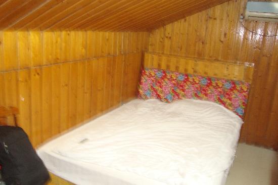 Dashu Guest House: 阁楼单间