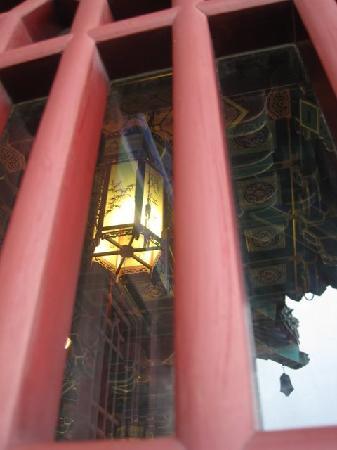 Yuejiang Tower: 仰望