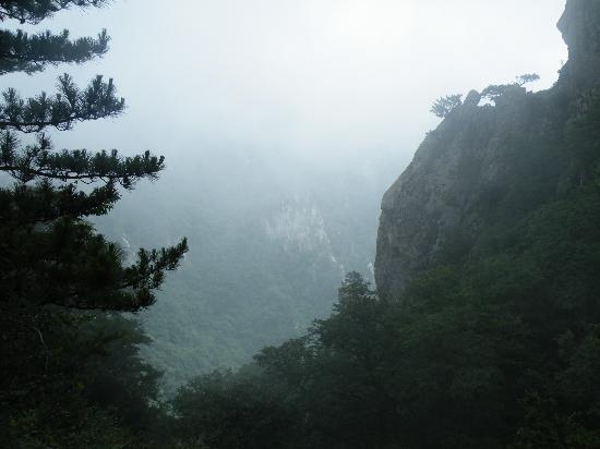 Xixia County, China: 老界岭风光独秀