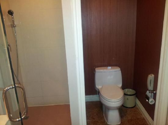 Eiffelton Hotel: 淋浴和马桶