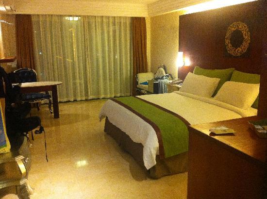 Xinglong Old Banyan Tree Hot Spring Resort : 房间很大很舒适