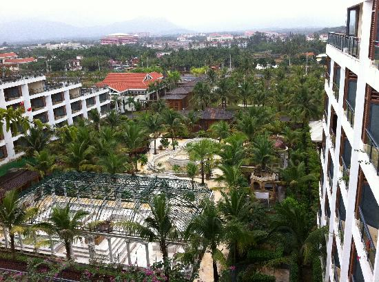 Xinglong Old Banyan Tree Hot Spring Resort : 右边是3区,拍照的地方是5区,左边也不知道是几区