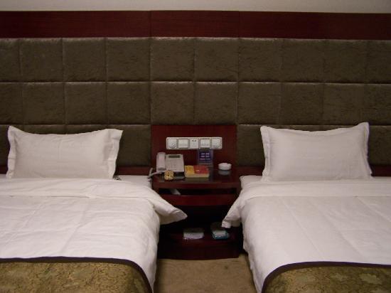 Jialong Hotel Xi'an Zhonglou: 双床