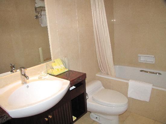 Hotel Equatorial Shanghai: 卫生间还是比较干净,但手纸安放的位置有问题