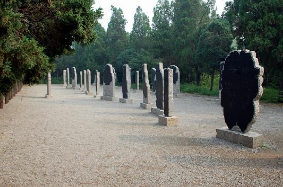 Yin Dynasty Ruins : 40978075