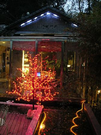 Emerald Hostel: 火树