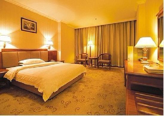 Rotating Palace Hotel: 高级单人房