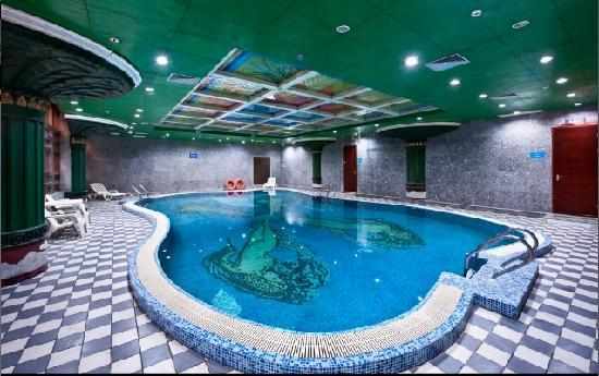 Jinling Garden Hotel Taicang : 游泳池