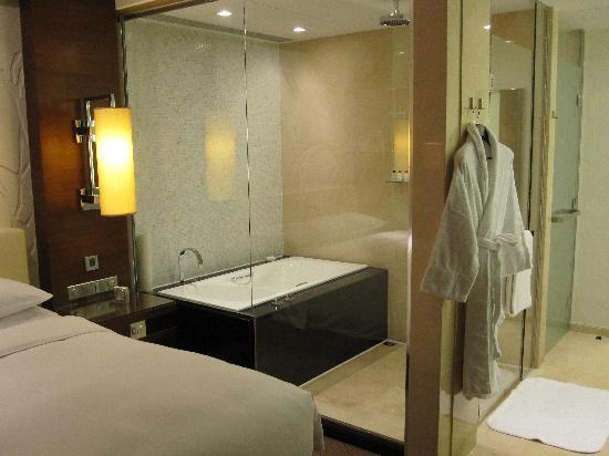 โรงแรมแกรนด์ ไฮแอท มาเก๊า: 浴室一角