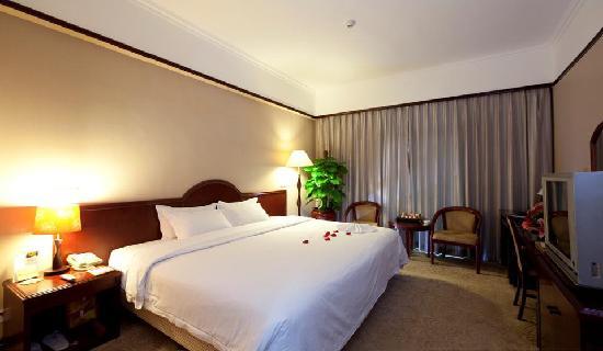 Kindlion Apartment Hotel: 至尊大床房
