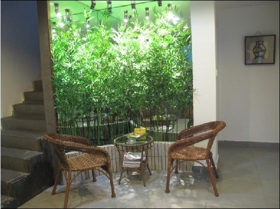 Lvyin Inn : 绿荫客栈休闲一角