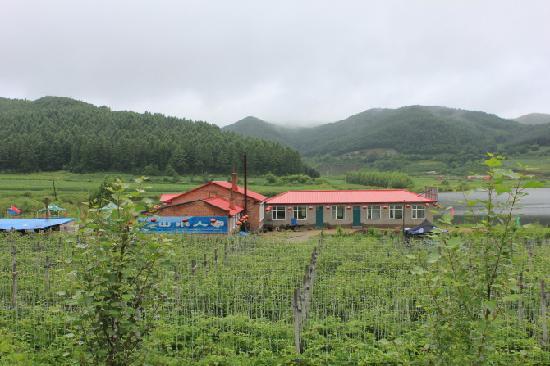 Boli County, China: 山好水好菜也好吃