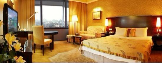 Lijiang Waterfall Hotel: 城景大床房