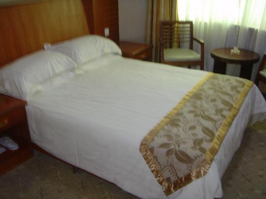 Jiangnan Hotel: 商务房