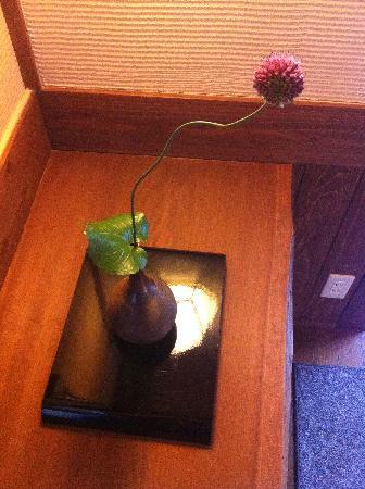 Zen Oyado Nishitei: 一直对这根草很有兴趣