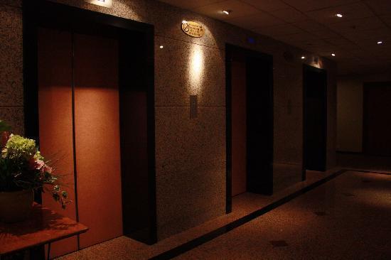 Hotel Royal Singapore: 电梯