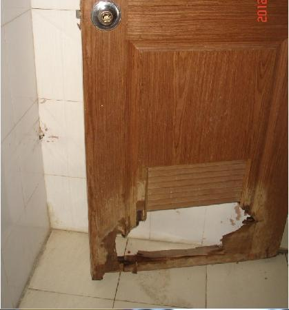 Xinsheng Hotel: 这就是卫生间的门啊!