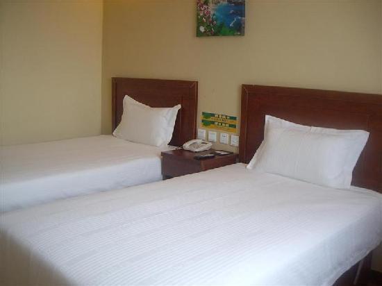 GreenTree Inn Cangzhou Jianshe Avenue Express Hotel: 客房
