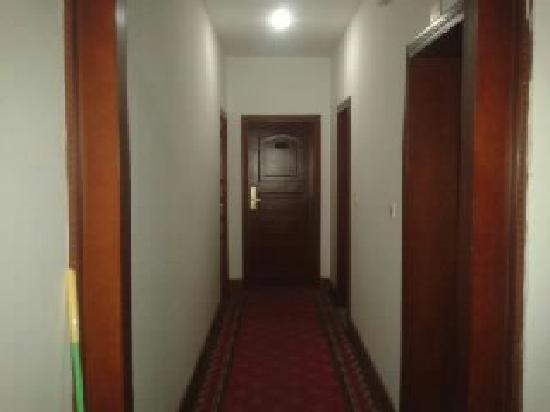 Qinglv Holiday Hotel : 走廊
