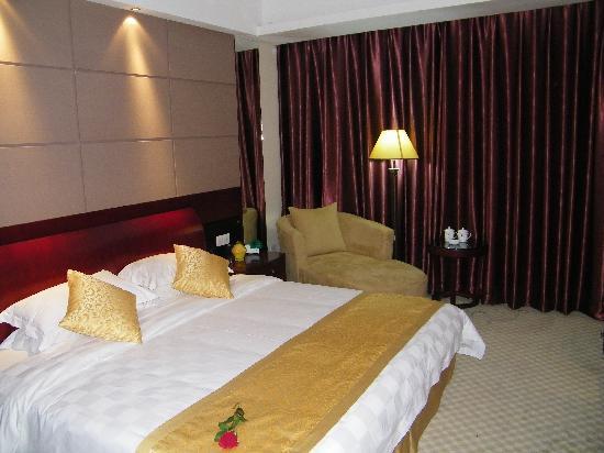 Dingzhou International Hotel: 豪华商务间