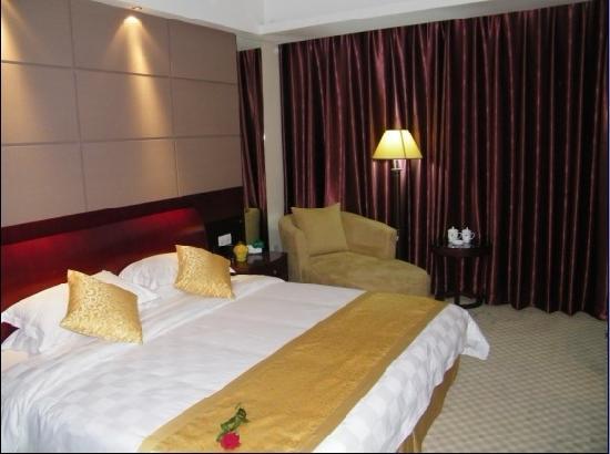 Dingzhou International Hotel: 豪华单人间