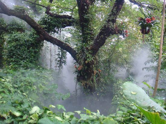 Xiamen, China: 美丽的仙境好迷人