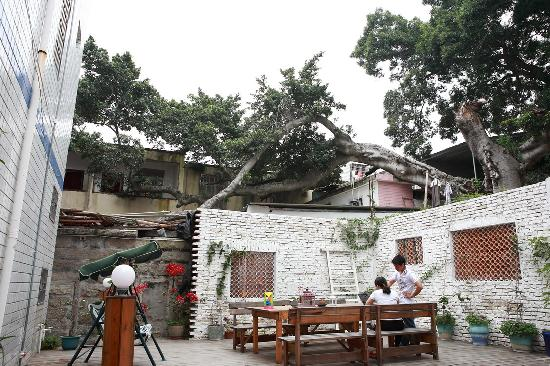 Rongshuxia Coffee Guest House: C:\fakepath\ZQY_XM333