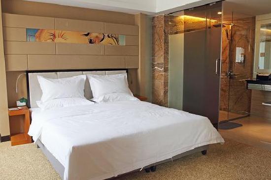 Wangzi Hotel: 豪华单人间