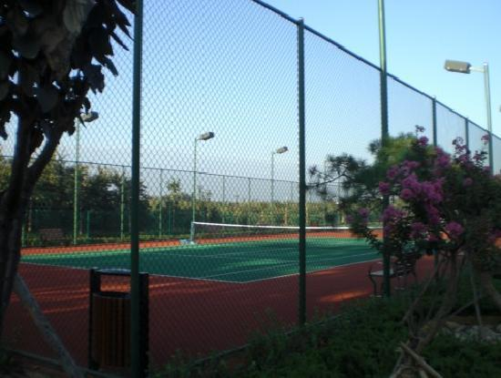 Liyuan Hotel: 酒店网球场