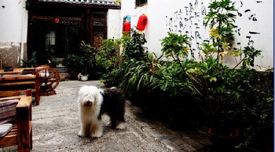 Jiaju Inn Chenxiang Xiaoxie: getlstd_property_photo
