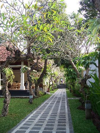 Dampati Villas: 通向Villa大门的小路