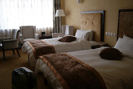 Kaiyuan Lhasa Hotel Vip Building : 舒适的大床房