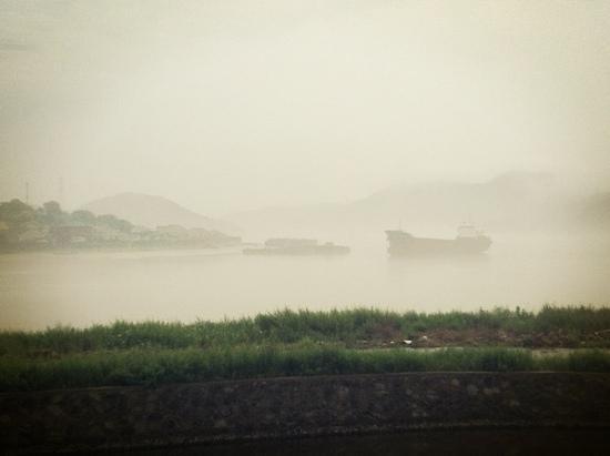 Phoenix  Island Resort Zhoushan : 下雨的清晨,露台上看出去的风景如画